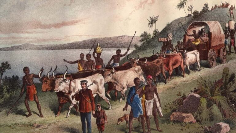 Dr. David Livingstone and the exploration of Africa