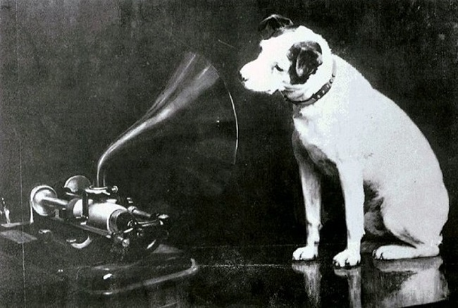 gramofon ve pikap