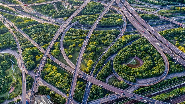 orman şehirler