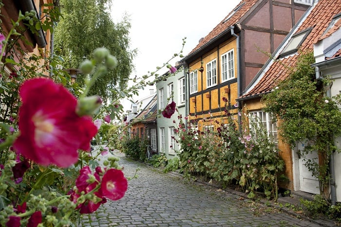 İskandinav ülkeleri / Aarhus