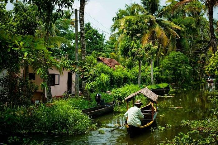 Güney Hindistan / Kerala Backwaters