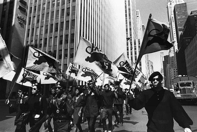 black panther veya kara panter black power'ı destekledi