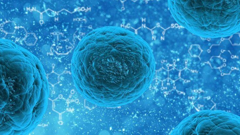 Tip 1 diyabet büyük kök hücre buluşu ile çözülebilir