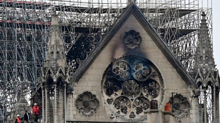 180.000 arı Notre Dame yangınından sağ çıkmayı başardı