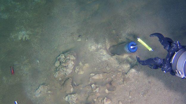 petrol yiyen bakteri araştırması ve Çin denizaltısı 2012'de 7.000 metre derinlikteki Mariana Çukuru'ndan örnek alırken