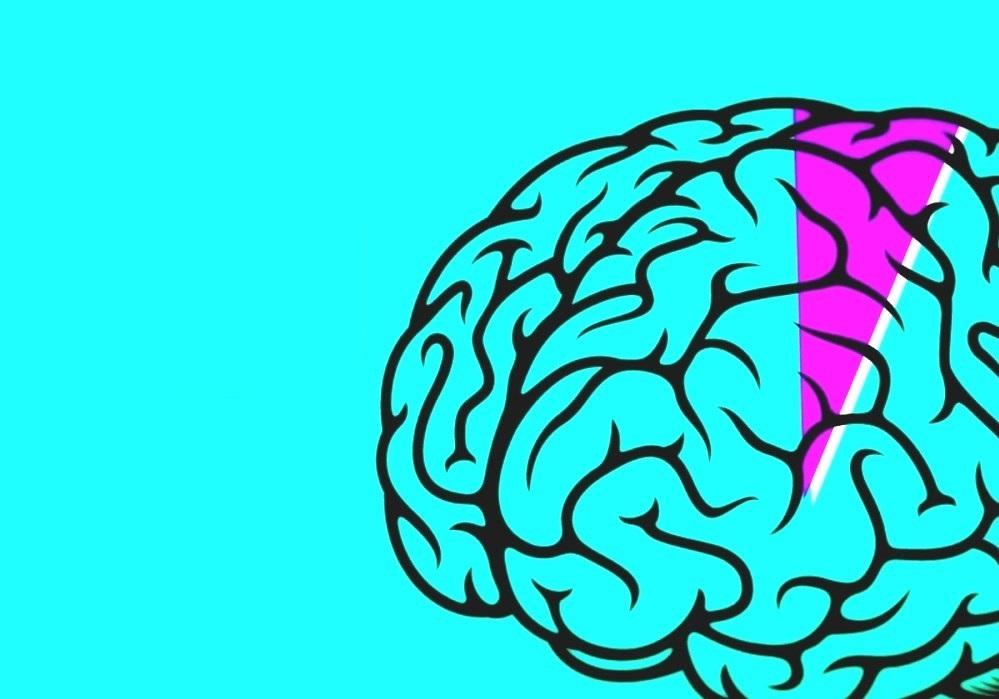 Beynimizin tümünü kullandığımızı gösteren çalışmalar