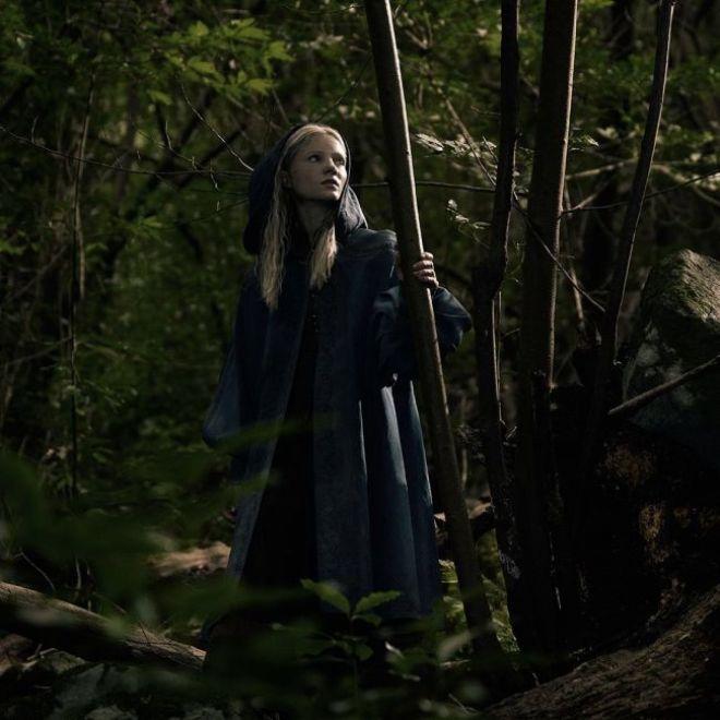 The Witcher dizisi karakterleri