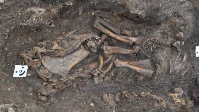 İki nadir Viking mezar gemisi İsveç'te ortaya çıkarıldı