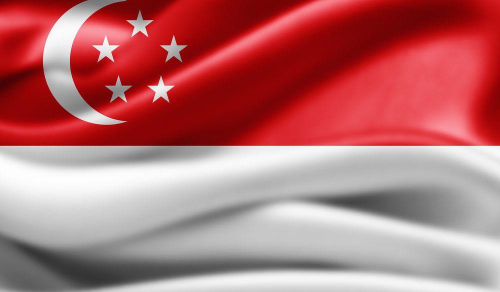 Singapur bayrağında kırmızı evrensel kardeşliği ve insanın eşitliğini, beyaz saflık ve erdemi, hilal yeni ulusu, beş yıldız ise demokrasi, barış, ilerleme, adalet ve eşitliği simgeliyor.