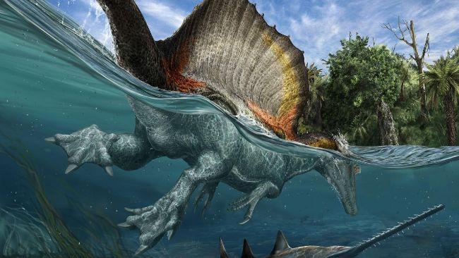 Yüzdüğü kesin olarak bilinen Spinosaurus sadece balık avlardı.