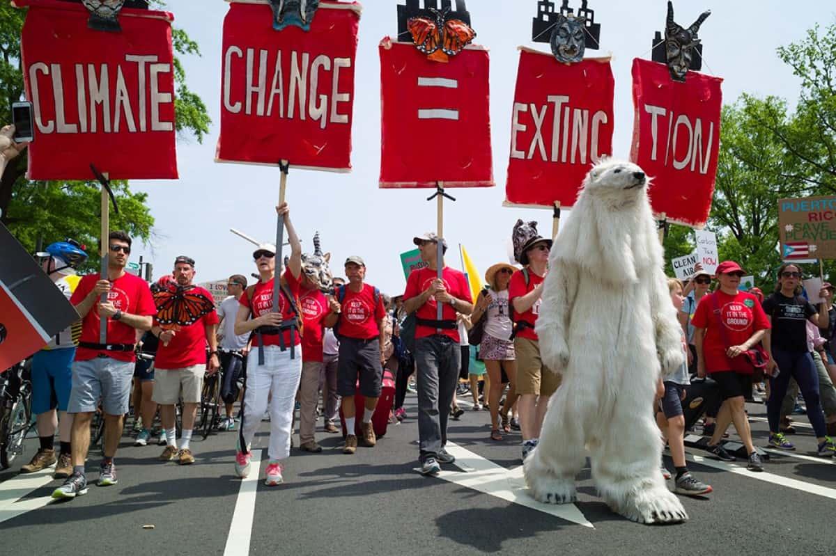 iklim değişikliği yürüyüşü
