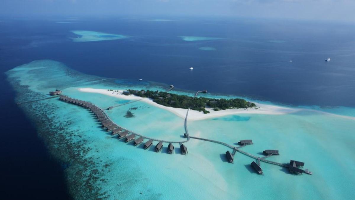 en çok adaya sahip ülkeler