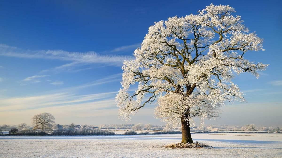 kış gündönümü