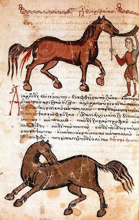 Ata solüsyon vererek ishal olmasını sağlamayı içeren 14. yüzyıla ait bir Bizans el yazması.