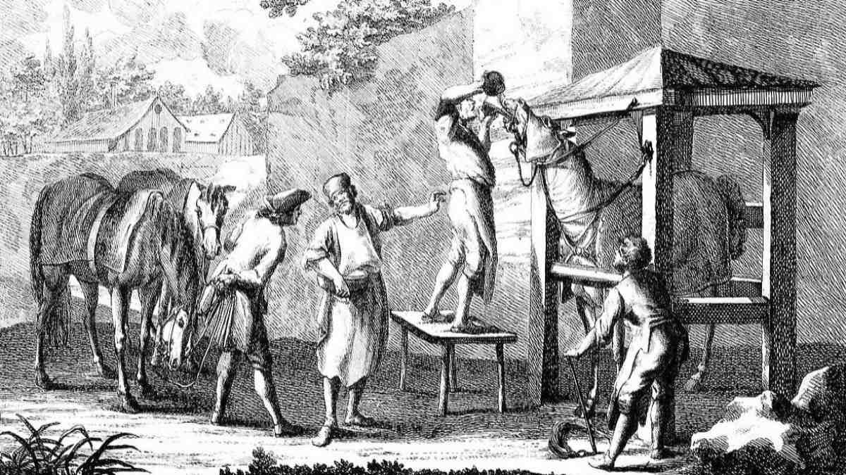 18. yüzyıl at doktorları