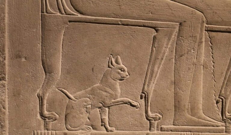 antik mısır kedi duvar sanatı