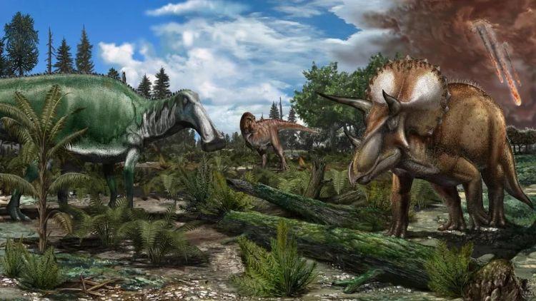 Dinozorların tarihi çeşitli hayvanları ele alan uzun bir zaman dilimini kapsıyor. Bu sanat eseri üzerinde Tyrannosaurus rex, Edmontosaurus ve Triceratops gibi dinozorların dolaştığı bir taşkın yatağını gösteriyor. Kuzey Amerika'daki geç Maastrihtiyen (~66 milyon yıl önce) paleoortamının çizimidir.