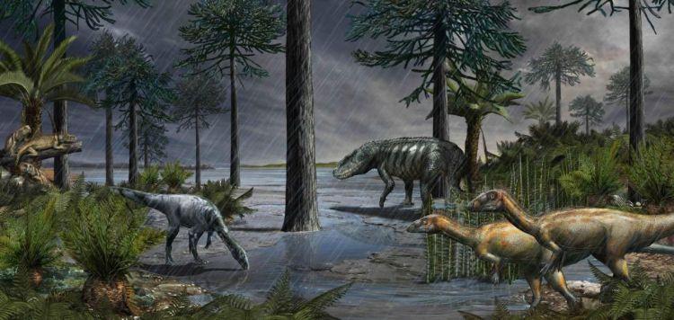 232 milyon yıl öncesinden, ardından dinozorların doğayı devraldığı Karniyen Pluvial Dönemi'nden bir yaşam sahnesi. Rauisuchian olarak bilinen büyük bir arkozor arka planda gizlenirken, iki dinozor türü ön planda durur ve soldaki kütüklerde rhynchosaurlar görülür. Çizim Arjantin'deki Ischigualasto Formasyonu'ndan elde edilen verilere dayanıyor.