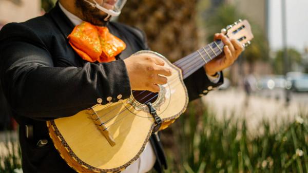 15. yüzyıldan vihuela. Modern gitarın öncülerinden.
