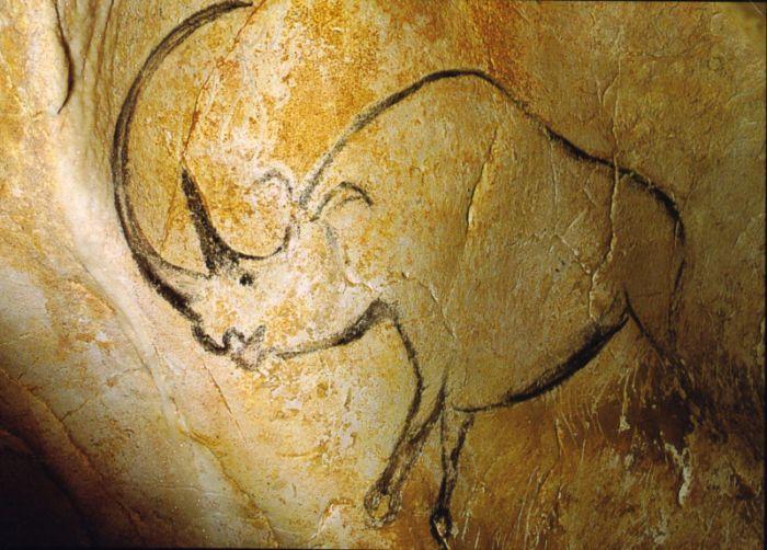 Fransa, Chauvet Mağarası'nda bulunan yünlü gergedan (Coelodonta antiquitatis) çizimi 33.000 ile 30.000 yıl öncesine ait.