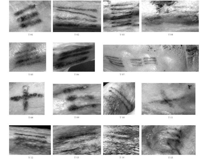 Ötzi'nin bazı dövmelerinin yakın görüntüleri.
