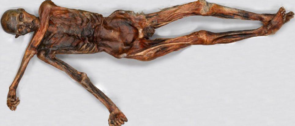 Buz Adam Ötzi'nin ölümünden binlerce yıl sonra buzdan çıkarılan bedeni.