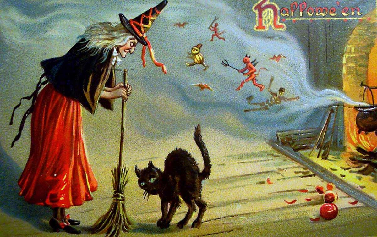 Kara kedi neden uğursuzlukla ilişkilidir?