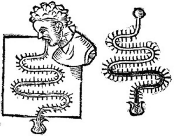 Sağlıkta kullanılan Santorio termoskopu.